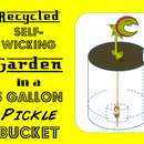 Recycled Self-Wicking Pickle Bucket Garden!