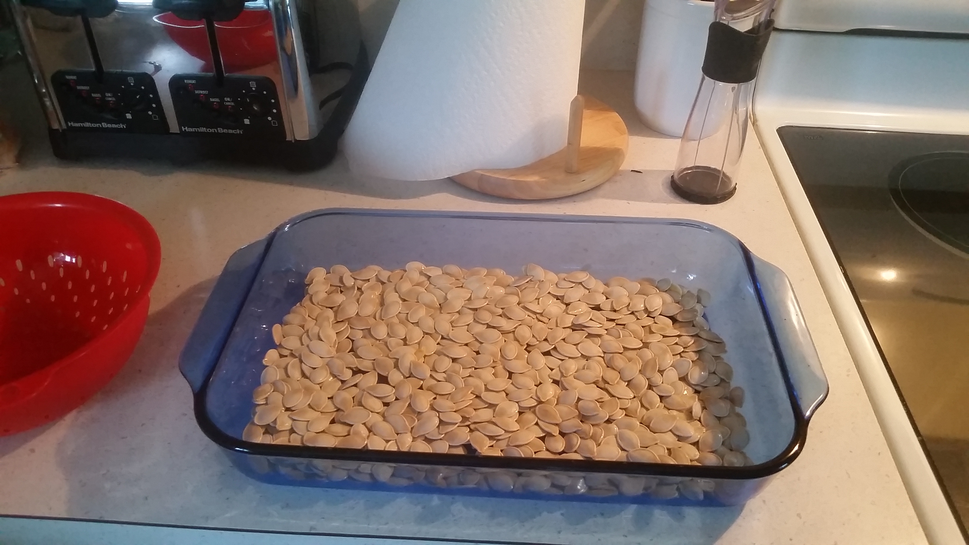 Picture of Baking the Pumpkin Seeds