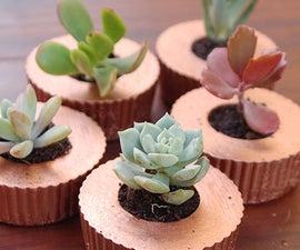 Cupcake Concrete Planters