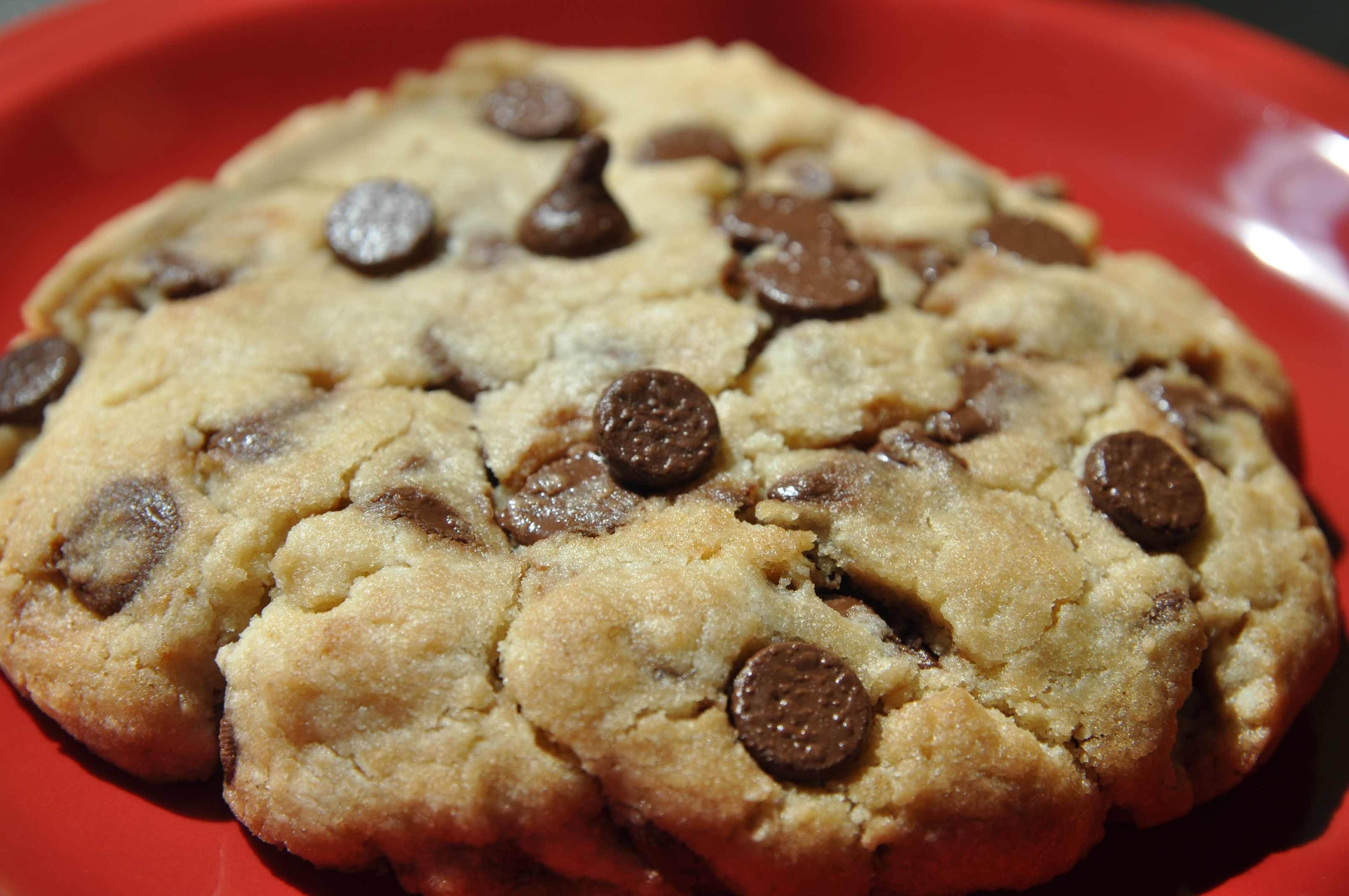Picture of Chocolate Chip Cookie for One