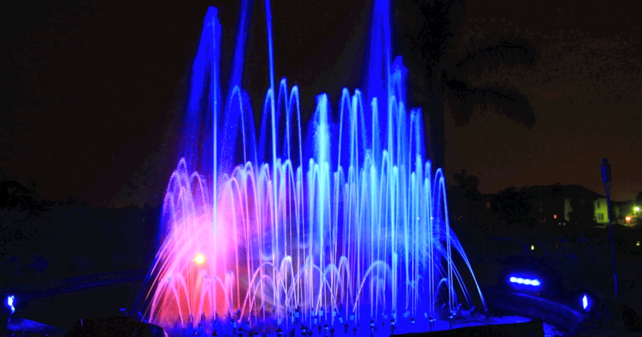 Picture of Homemade Disney World of Color Show