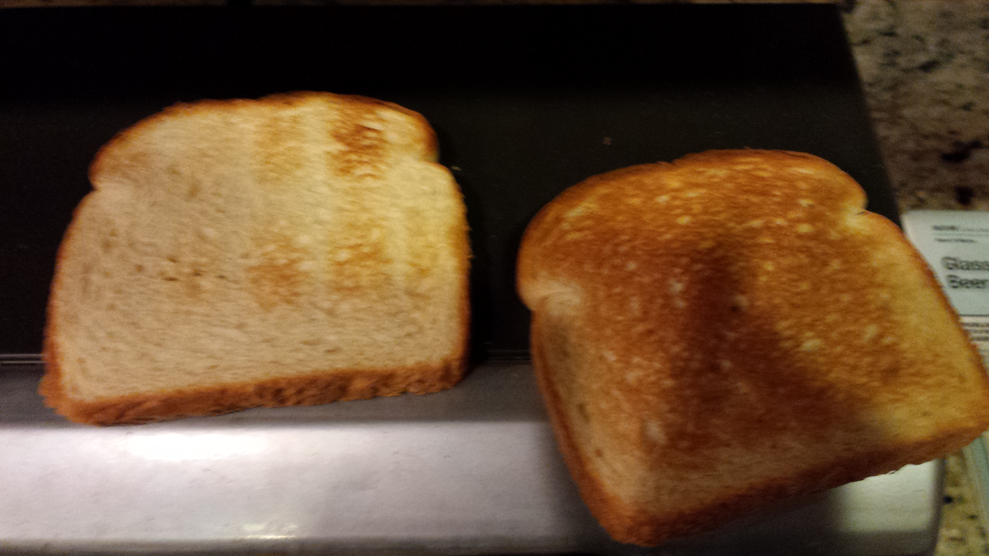 Picture of Toasting the Bread