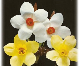 How to make paper daffodils and narcissi!