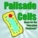 Palisade Cell Structure (Education Challenge entry)