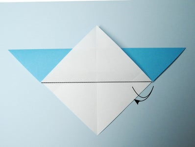 The Preliminary Folds