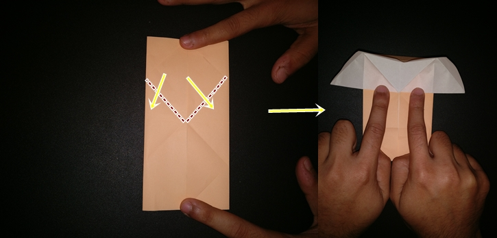 Picture of From the Top Half Take the Inside Corners and Fold Them Along the Diagonal As Shown.  Hold It