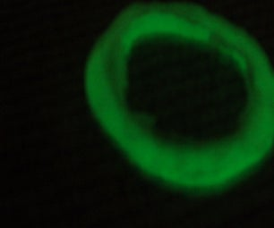 Glow in the Dark Seatbelt Buckle Band