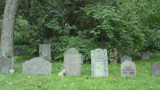 Set Up the Tombstones in Your Yard