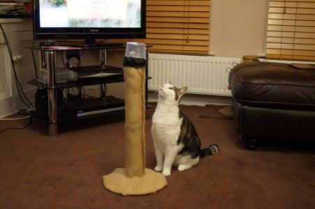Cat Laser Tower