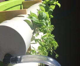 Herboponic- a Hydroponic Herb Garden