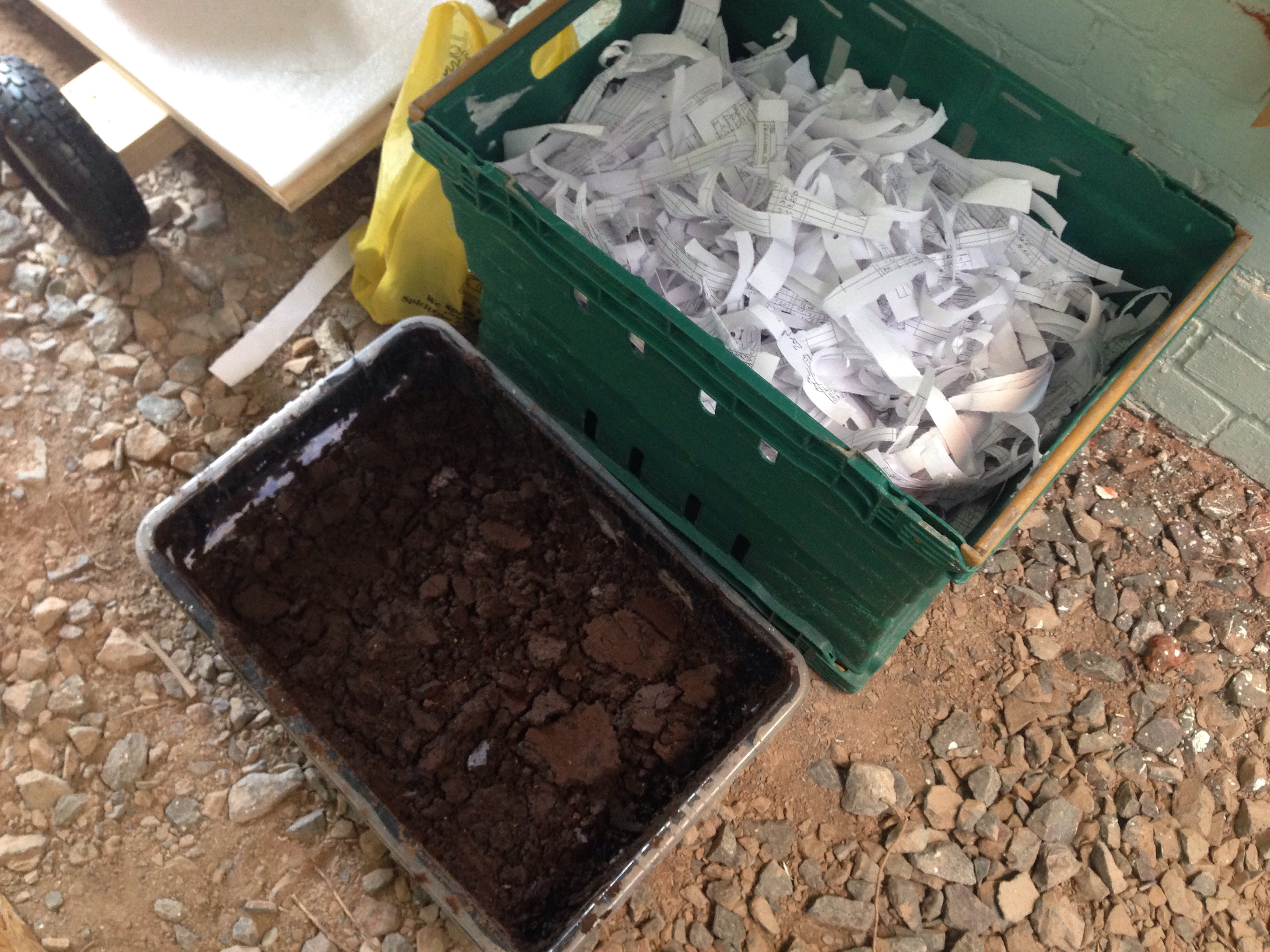 Picture of Transfer Existing Colony to New Wormery