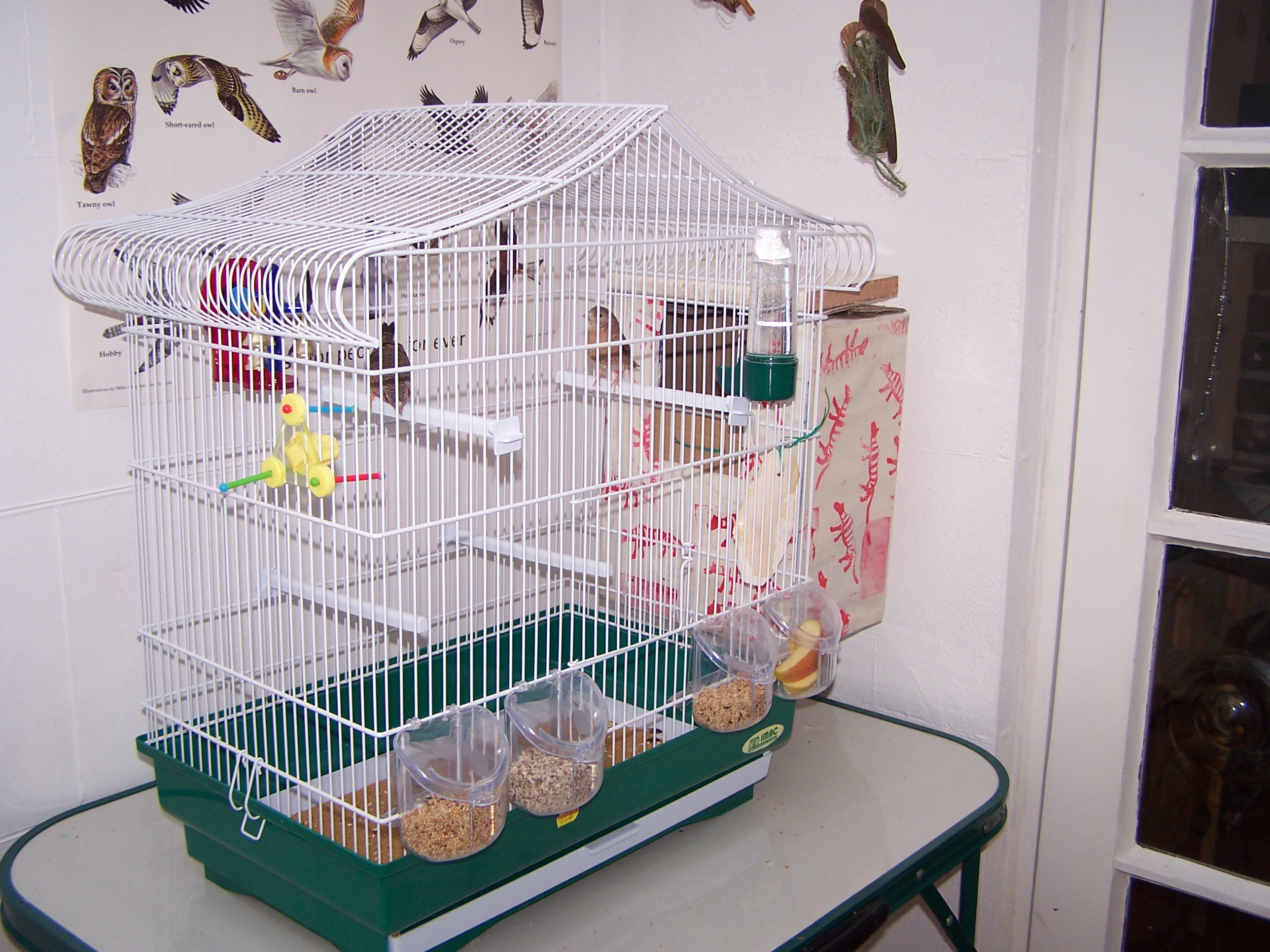 Picture of Fix the Box to Cage