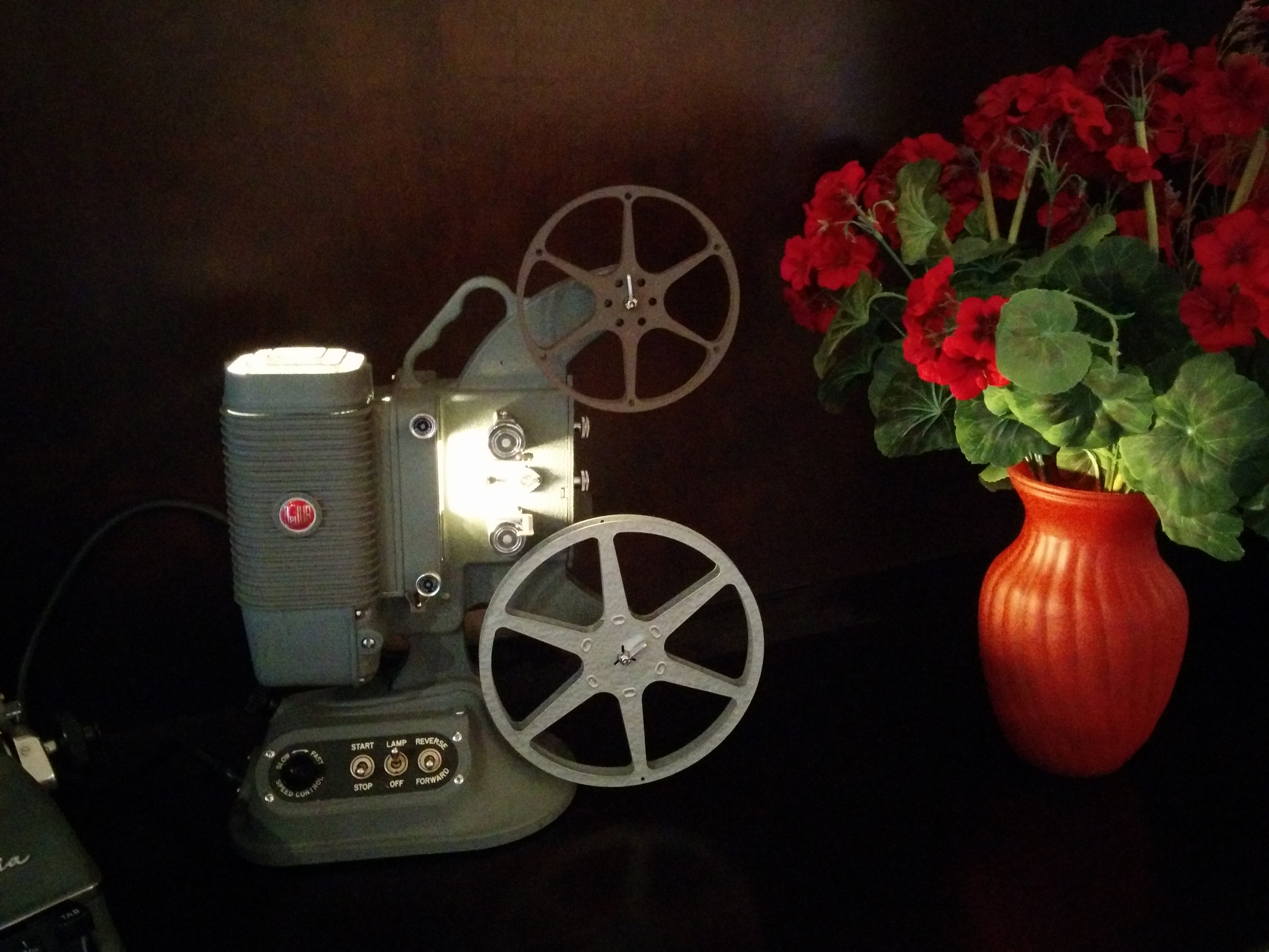 Picture of 8mm Home Movie Projector Lamp