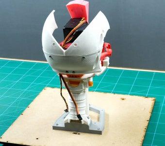 Assembling the Back Skull
