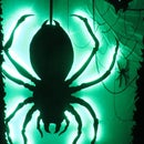 Toxic Green Safety Spider