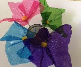 Cellophane Flowers