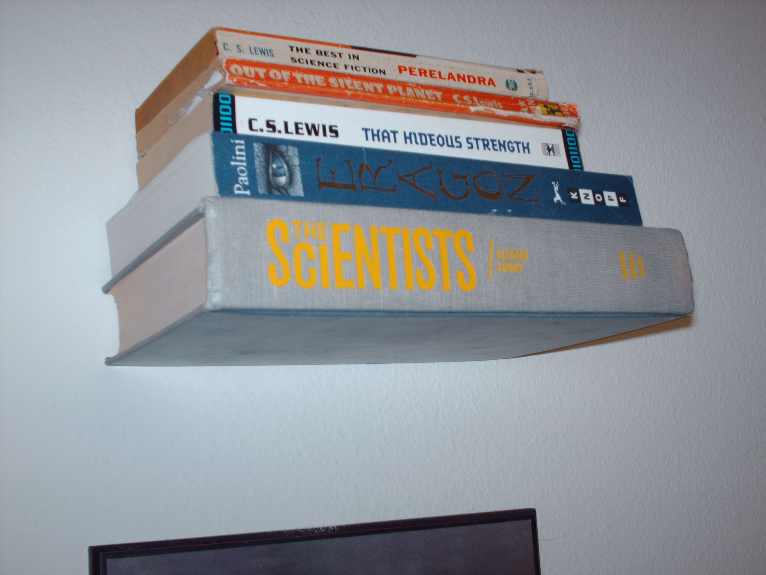 Picture of Invisible Book Shelf