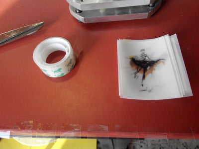 Step 11: Printing the Moving Picture