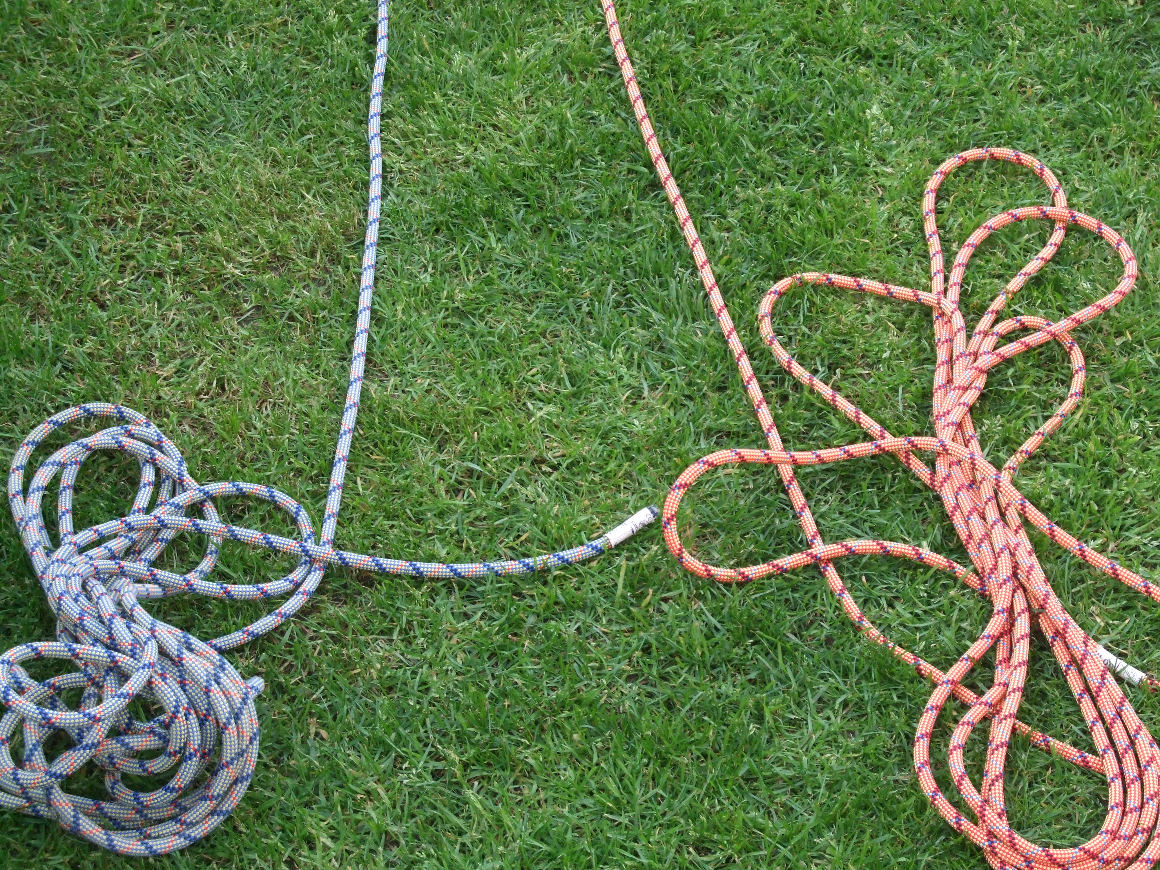 Picture of The Ropes