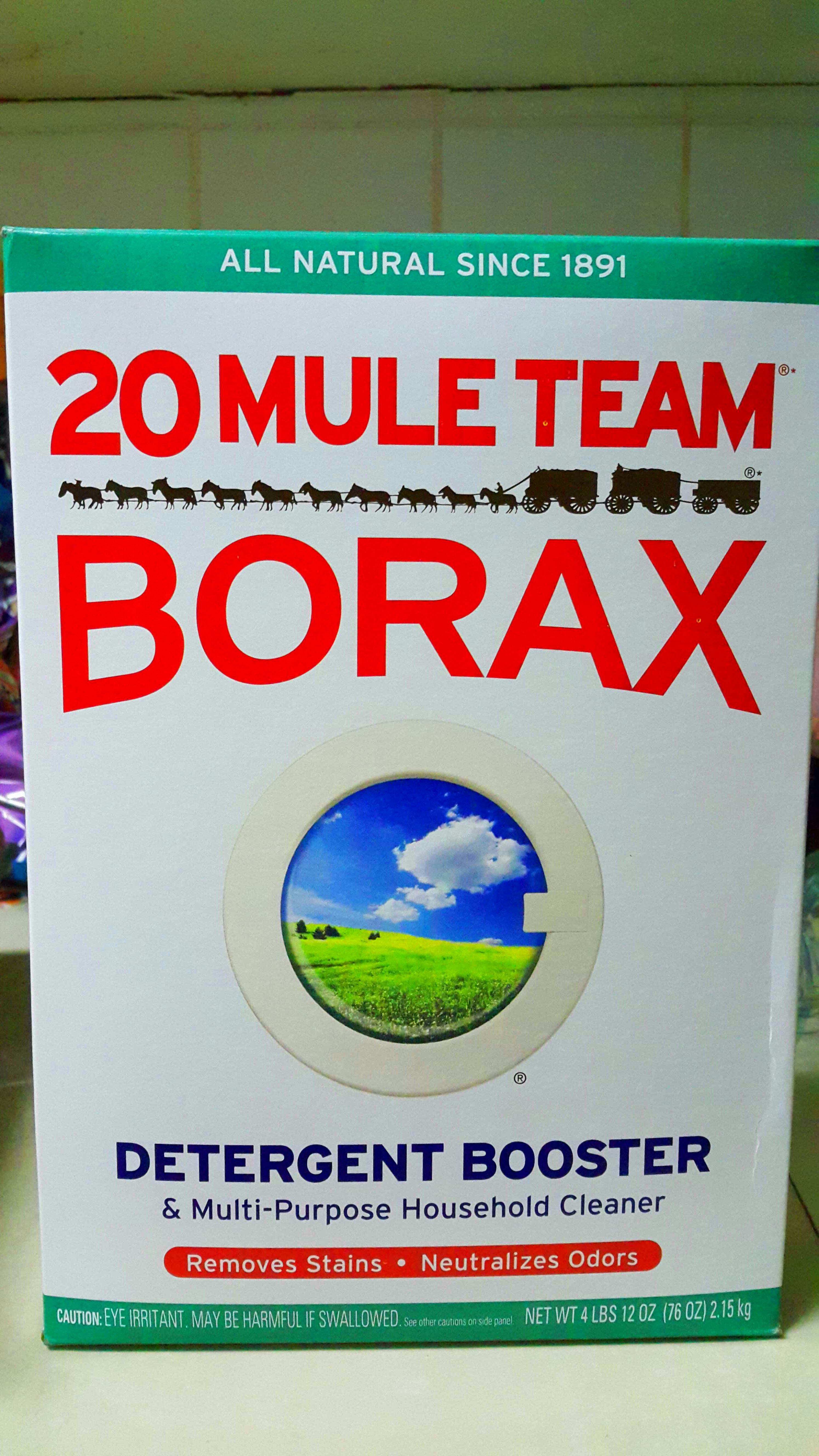 Picture of Borax!