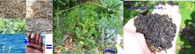 Easy Organic Garden Any Where - the NO DIG GARDEN