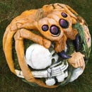 Giant Spider Pumpkin Carving