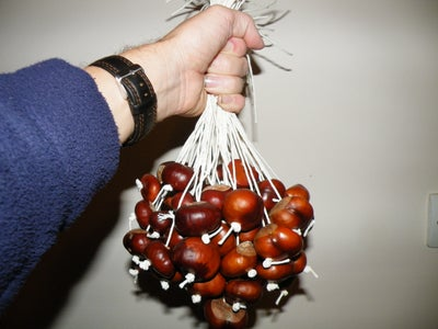 How to Play Conkers.