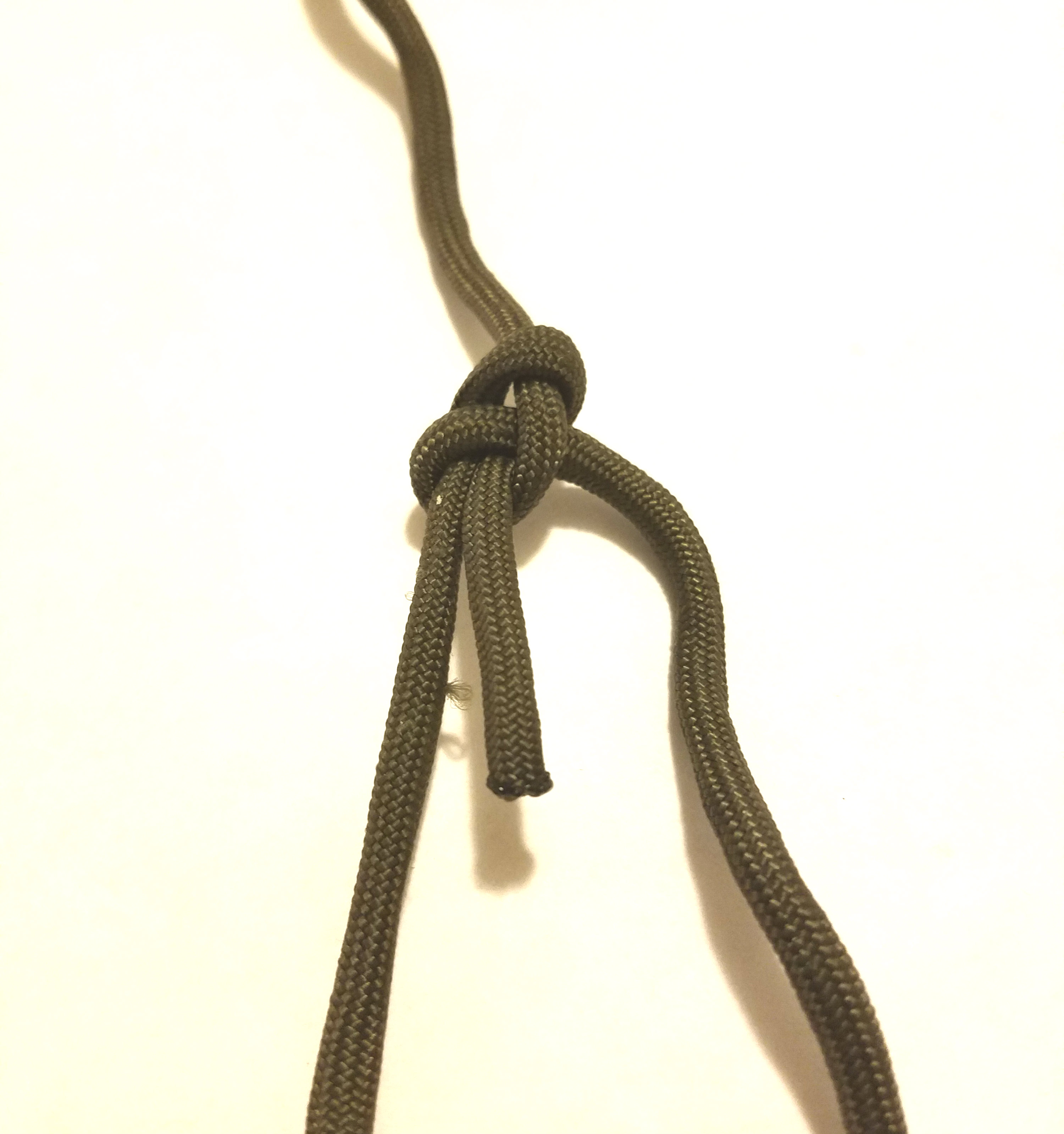 Picture of Bowline Knot