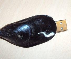 mussel usb