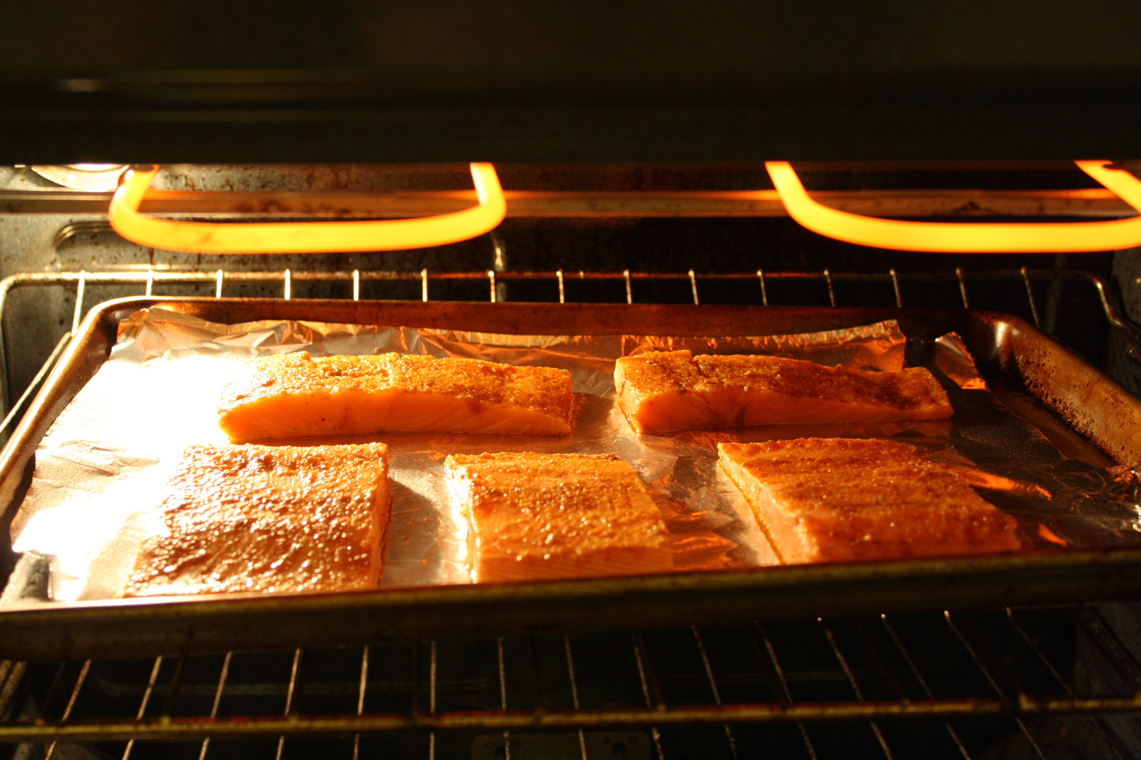 Picture of Cook Salmon