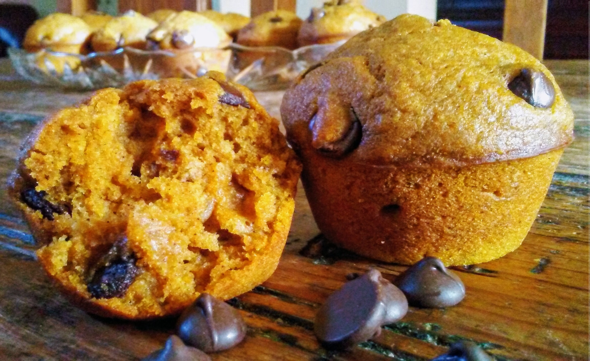 Picture of 2nd Place Pumpkin Chocolate Chip Muffins
