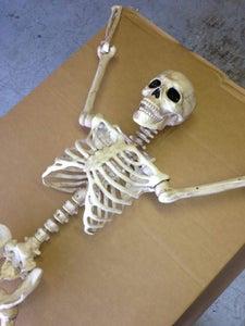 Aging Skeletons