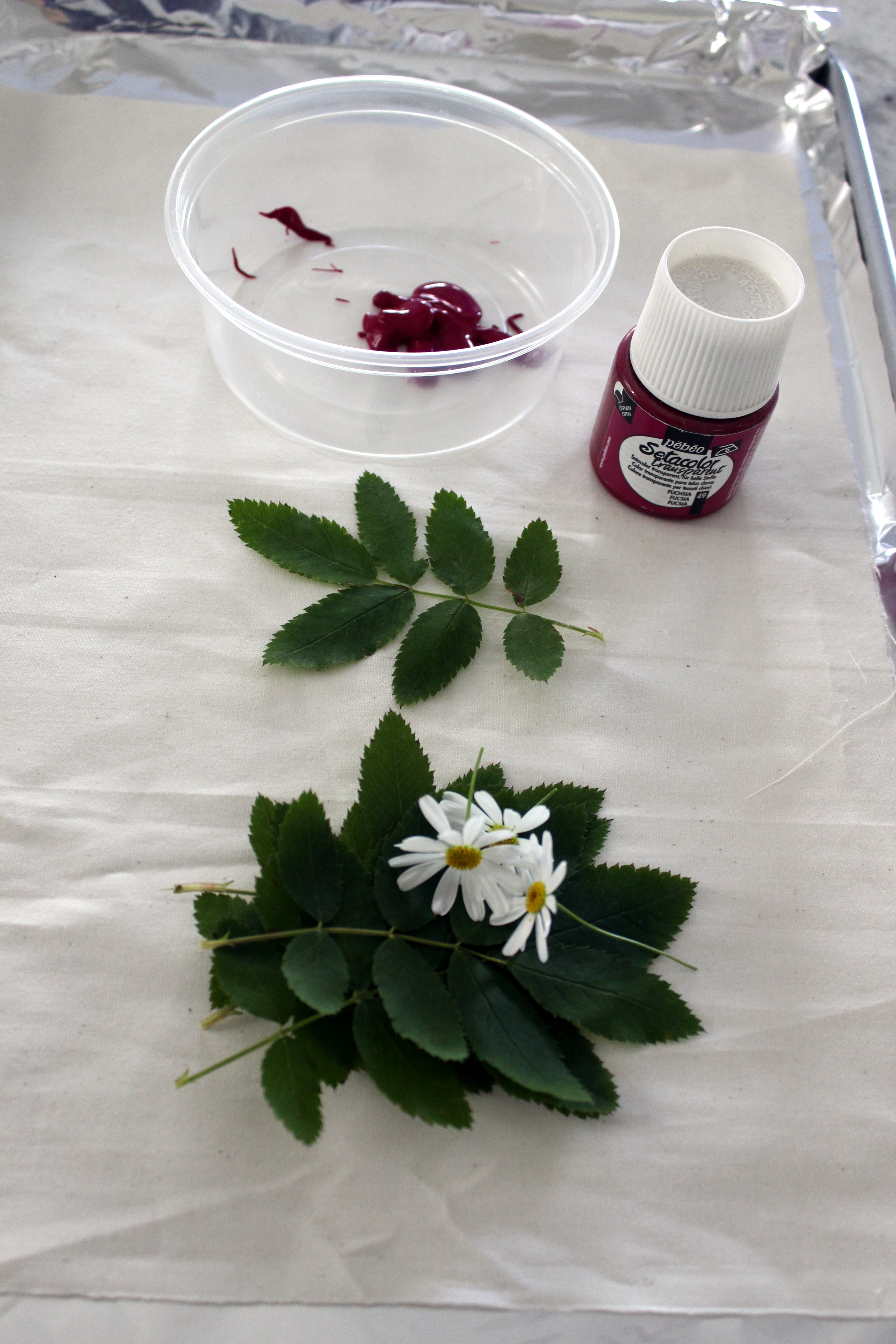 Picture of Gather Your Materials Including Leaves and Flowers
