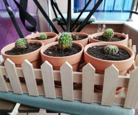 How to Save Cactus and His Children