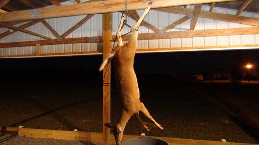 Hang Your Deer.