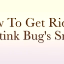 How to Get Rid of Stink Bug Smell!