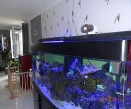 How to Make an Automatic Fish Feeder