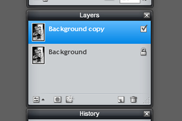 Picture of Duplicate the Layer
