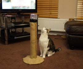 Cat Laser Tower