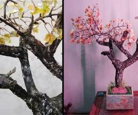 How to Make DIY Maple Tree, Old Autumn Tree ( Bonsai )