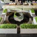 ShapeCrete :: Hypertufa / Concrete Planters for Teance Tea Shop