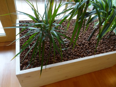 The Finished Planter
