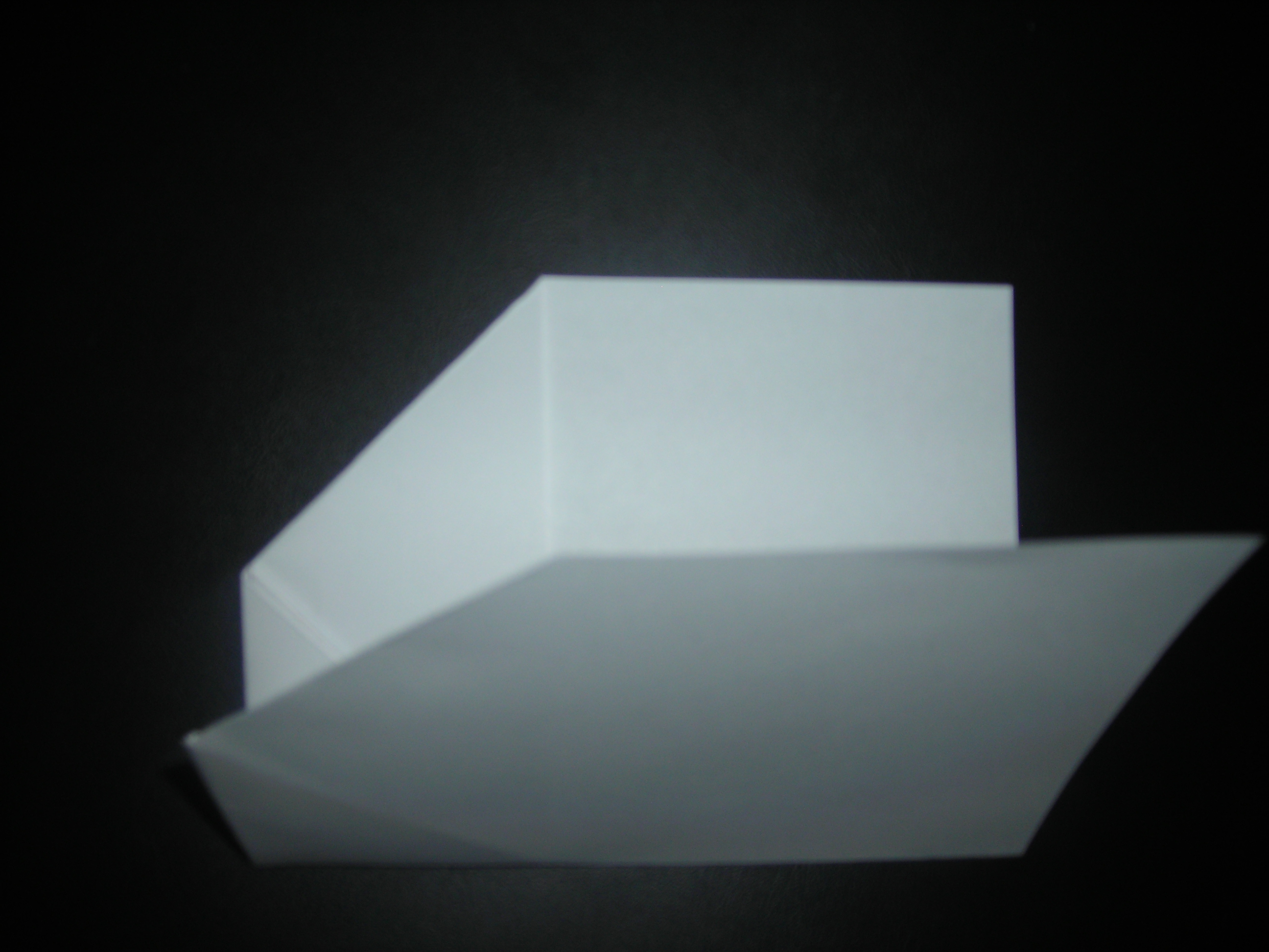 Picture of Folding in Half