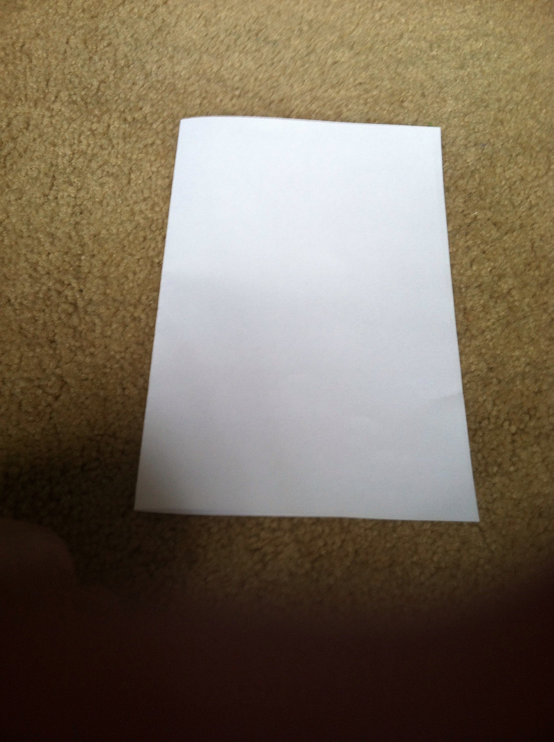 Picture of Fold 1