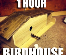 1 HOUR BIRDHOUSE