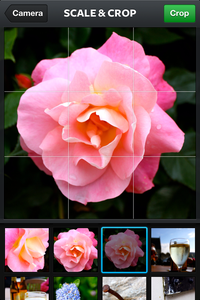 Select Your Photo