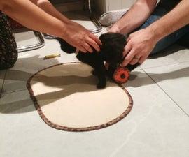 3D Printed Kitten Wheelchair