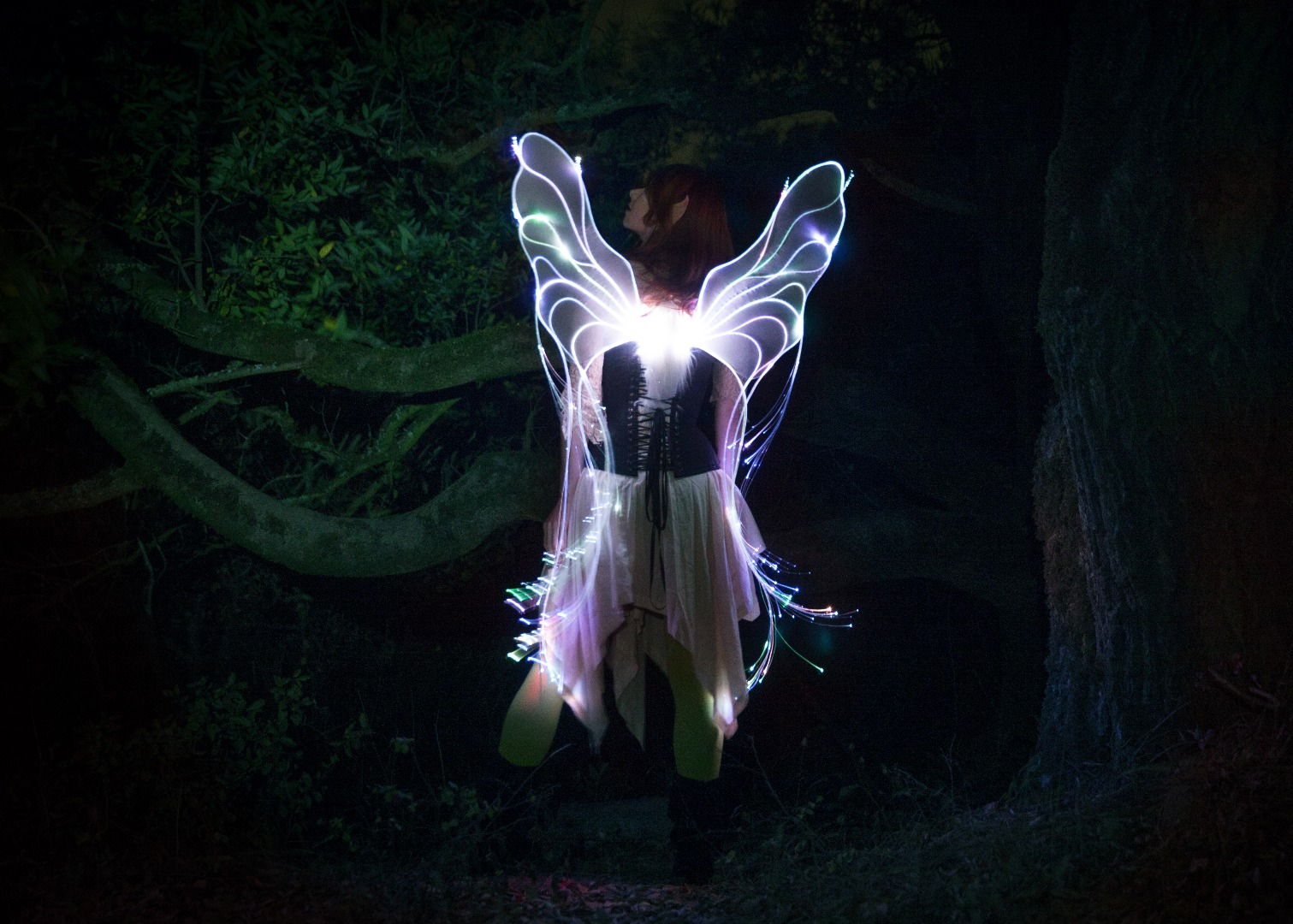Picture of Programmable Fiber Optic Fairy Wings