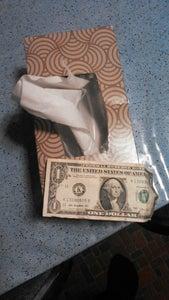 Tissue Box Safe