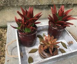 Rustic Succulent Box